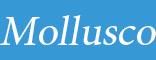 Mollusco